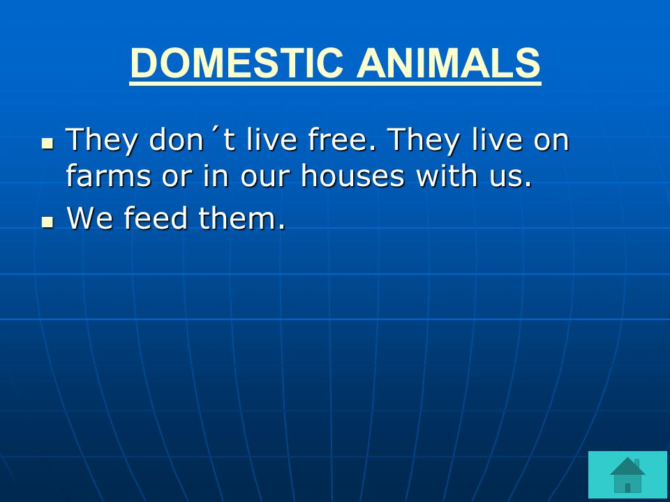 DOMESTIC ANIMALS They don´t live free.They live on farms or in our houses with us.