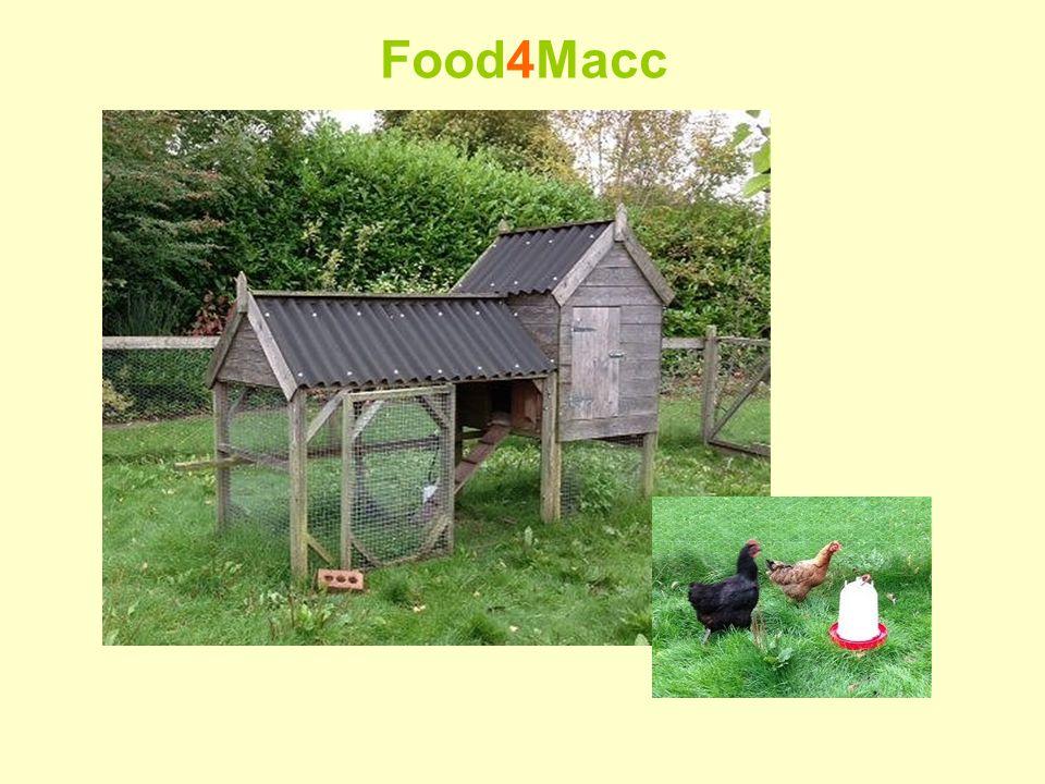 Food4Macc