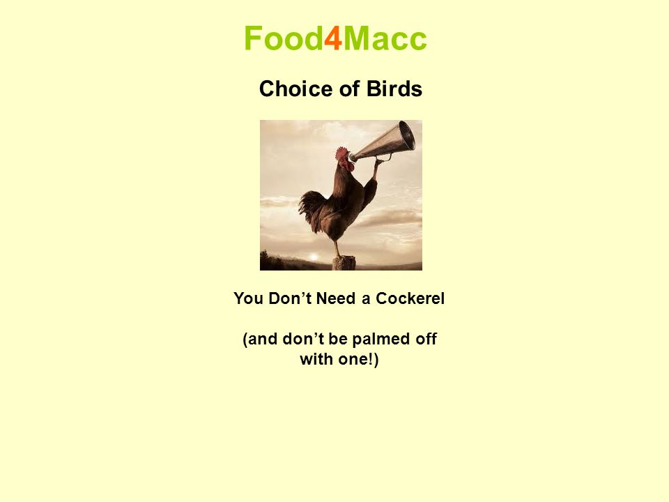 Food4Macc Choice of Birds You Dont Need a Cockerel (and dont be palmed off with one!)