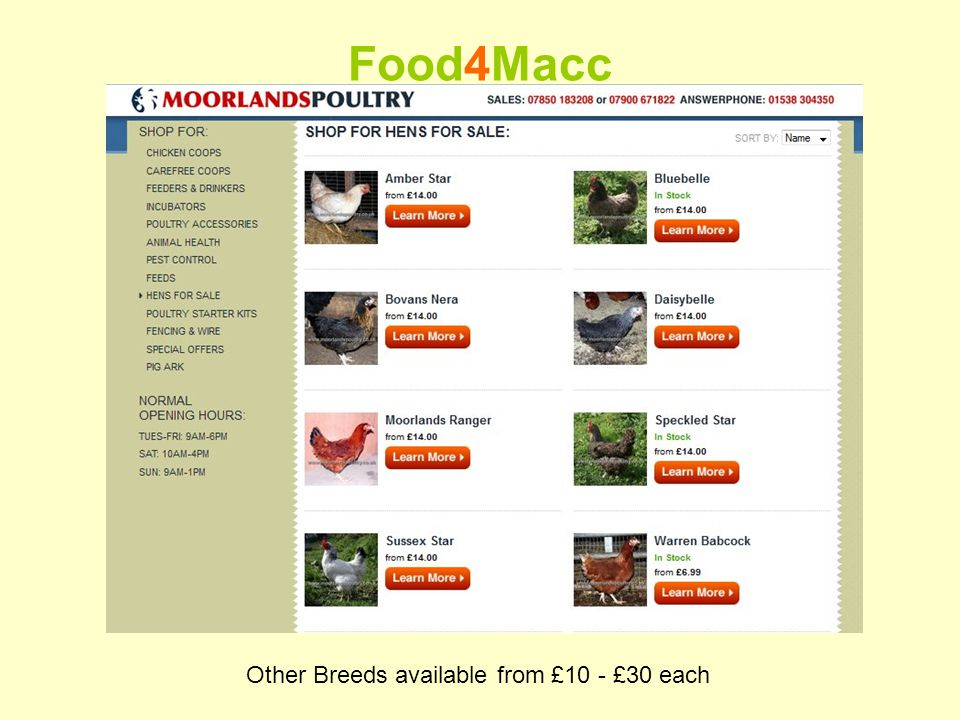 Food4Macc Other Breeds available from £10 - £30 each