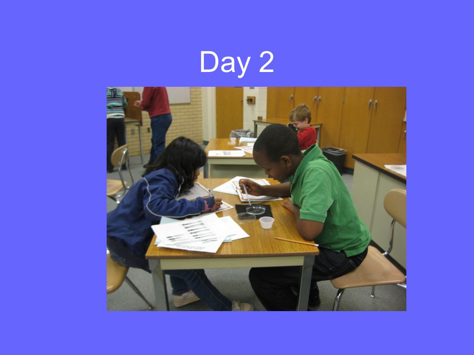 Day 2: Review of Day 1 Who was the male.female. –What were their physical traits.