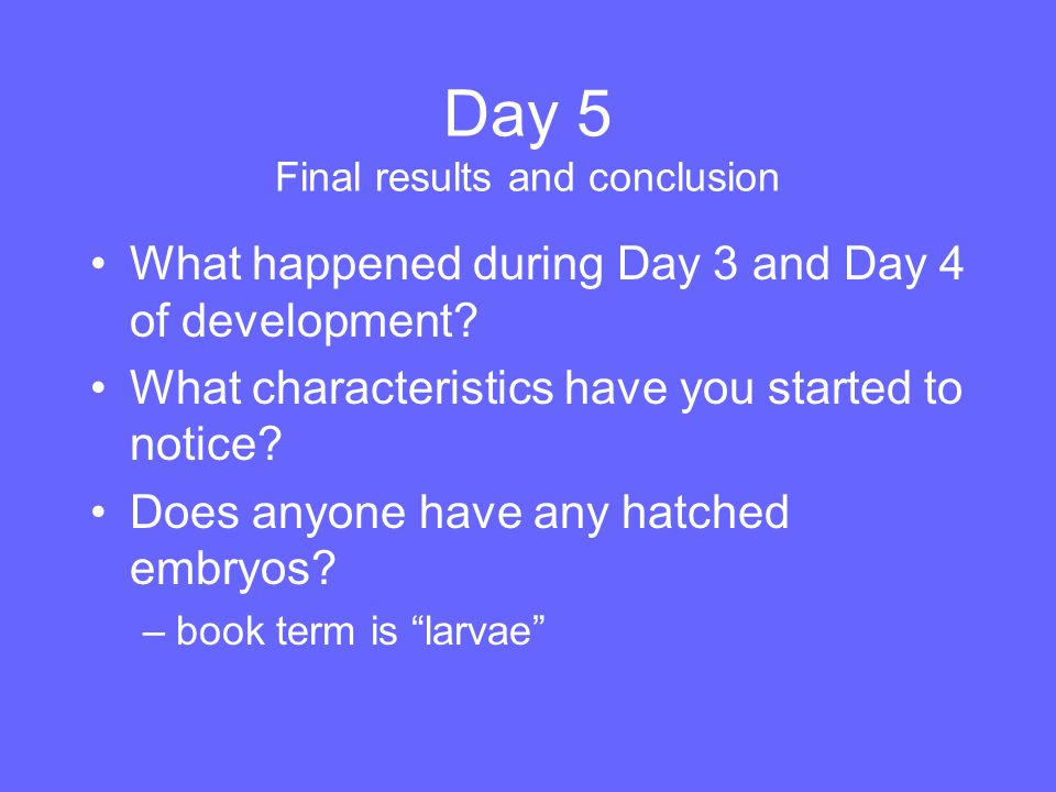 Day 5 Final results and conclusion What happened during Day 3 and Day 4 of development? What characteristics have you started to notice? Does anyone h