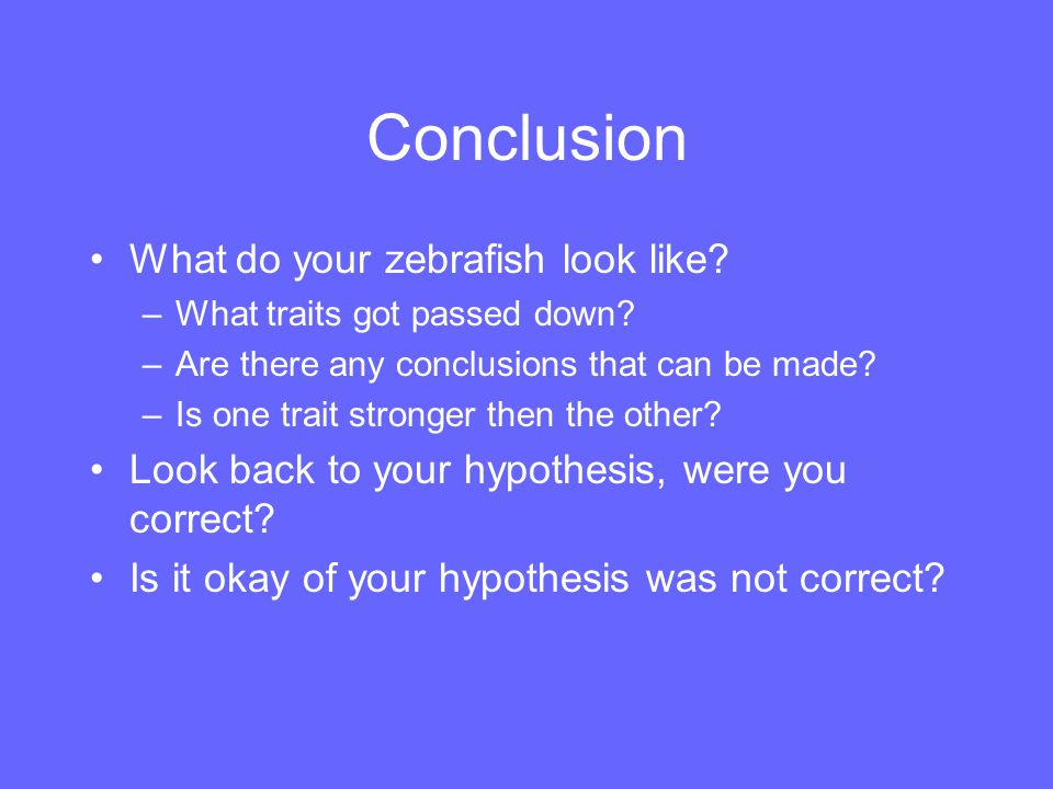 Conclusion What do your zebrafish look like? –What traits got passed down? –Are there any conclusions that can be made? –Is one trait stronger then th