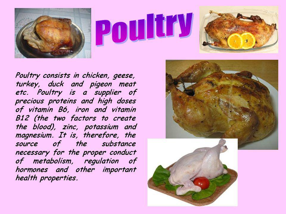 Poultry consists in chicken, geese, turkey, duck and pigeon meat etc.
