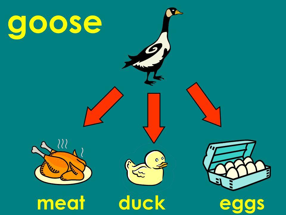 goose meatduckeggs