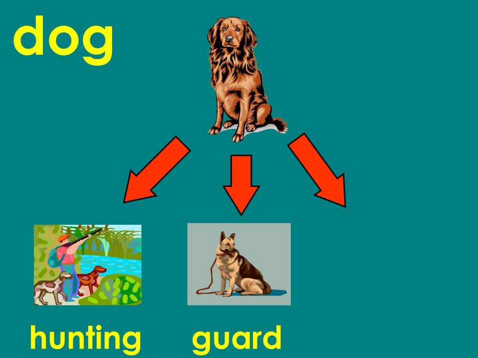 dog huntingguard