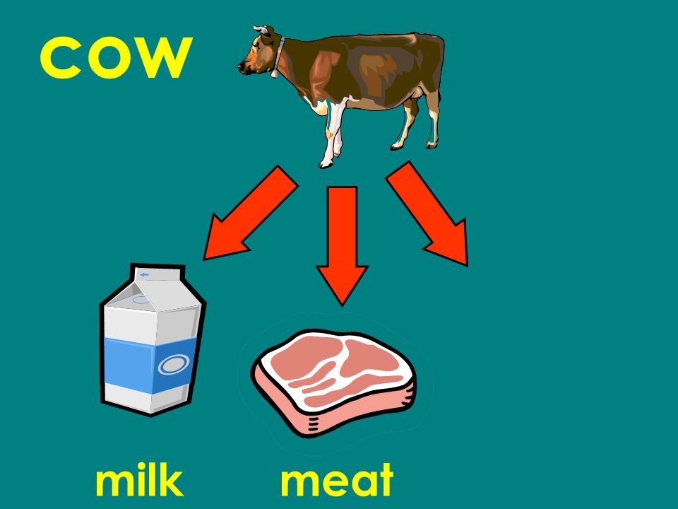 cow milkmeat