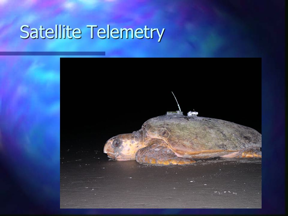 Satellite Telemetry