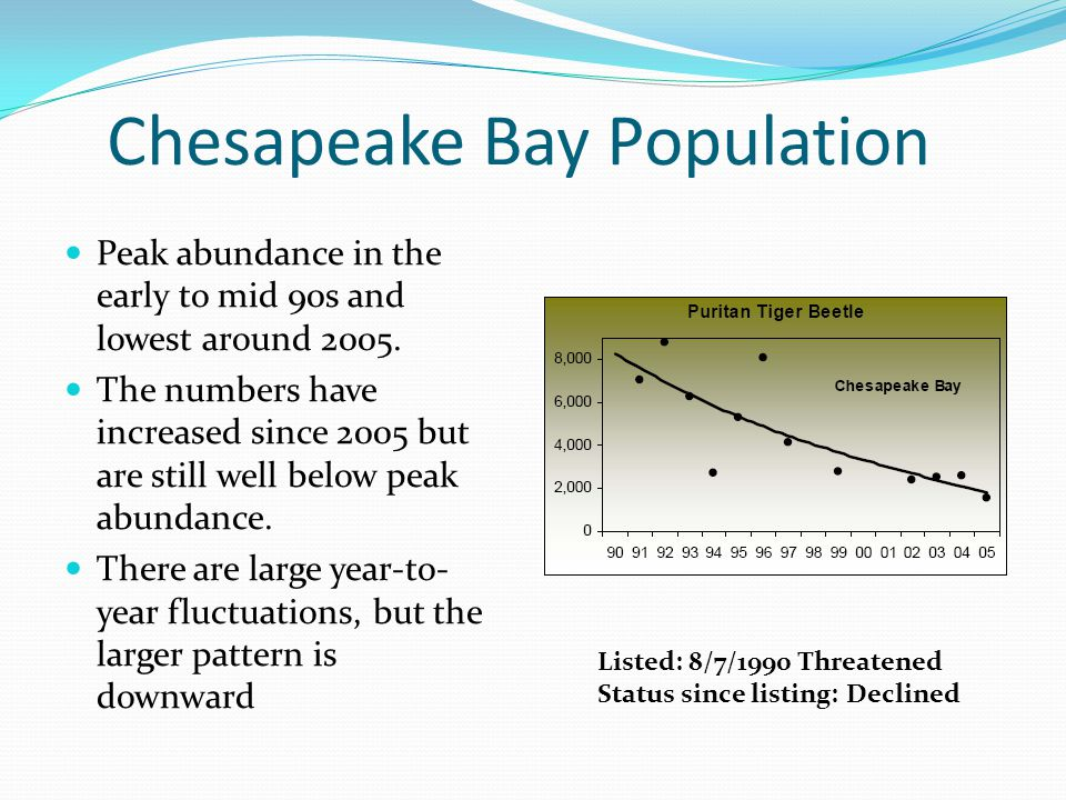 Listed: 8/7/1990 Threatened Status since listing: Declined Chesapeake Bay Population Peak abundance in the early to mid 90s and lowest around 2005.