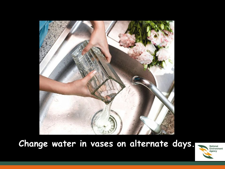 Change water in vases on alternate days.