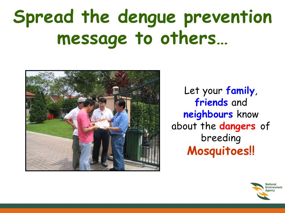 Spread the dengue prevention message to others… Let your family, friends and neighbours know about the dangers of breeding Mosquitoes!!