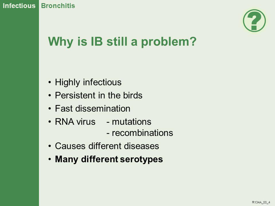 Infectious Bronchitis R134A_00_15 Example of results Maximum index = 40 Vaccine A: - - No protection Vaccine B: - - Good protection Ciliostasis Index