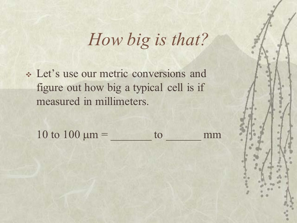 How big is that? Lets use our metric conversions and figure out how big a typical cell is if measured in millimeters. 10 to 100 m = _______ to ______