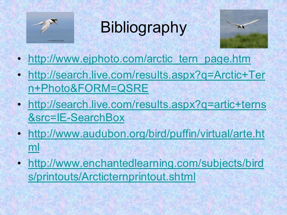 Bibliography http://www.ejphoto.com/arctic_tern_page.htm http://search.live.com/results.aspx q=Arctic+Ter n+Photo&FORM=QSREhttp://search.live.com/results.aspx q=Arctic+Ter n+Photo&FORM=QSRE http://search.live.com/results.aspx q=artic+terns &src=IE-SearchBoxhttp://search.live.com/results.aspx q=artic+terns &src=IE-SearchBox http://www.audubon.org/bird/puffin/virtual/arte.ht mlhttp://www.audubon.org/bird/puffin/virtual/arte.ht ml http://www.enchantedlearning.com/subjects/bird s/printouts/Arcticternprintout.shtmlhttp://www.enchantedlearning.com/subjects/bird s/printouts/Arcticternprintout.shtml