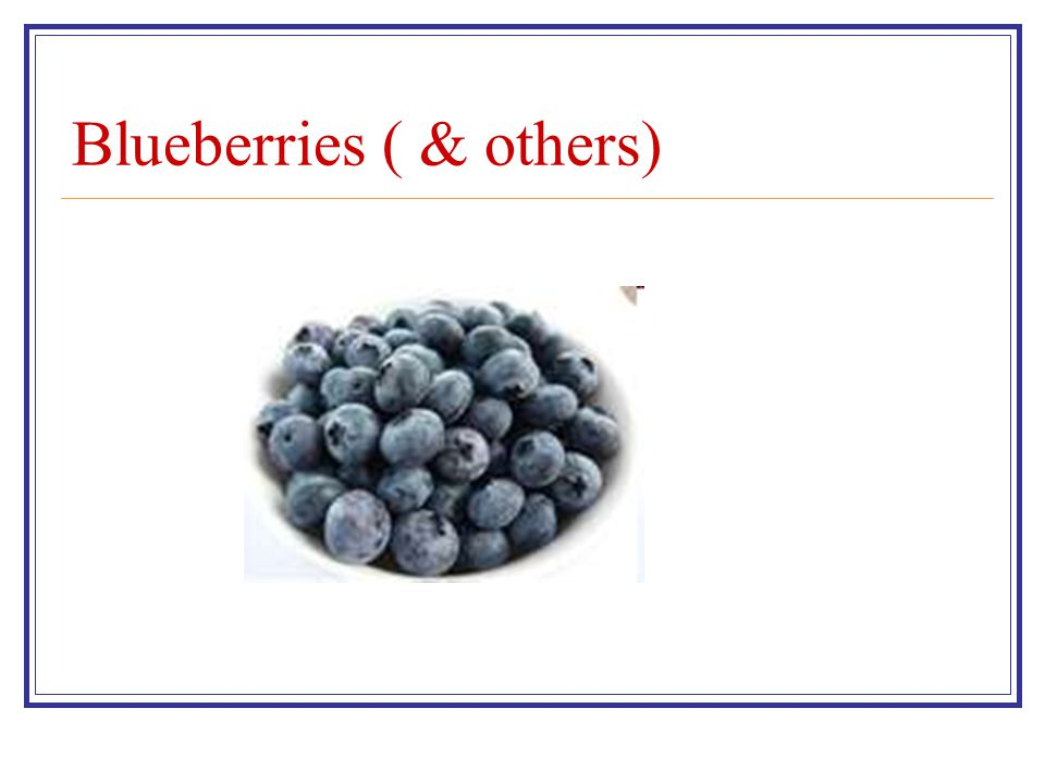 Blueberries ( & others)