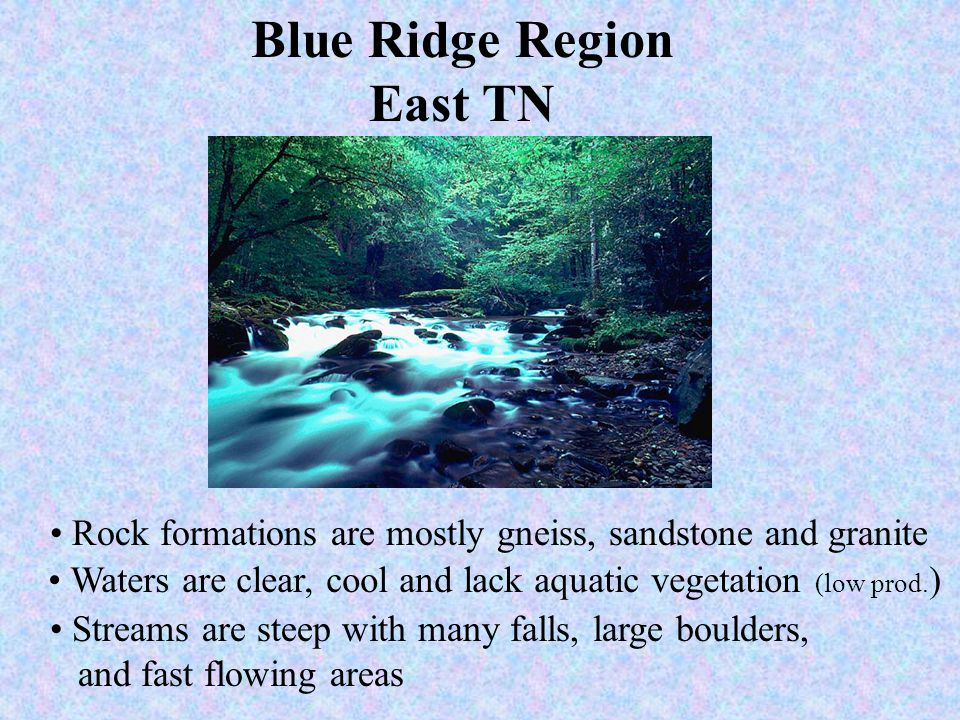 Blue Ridge Region East TN Rock formations are mostly gneiss, sandstone and granite Waters are clear, cool and lack aquatic vegetation (low prod. ) Str