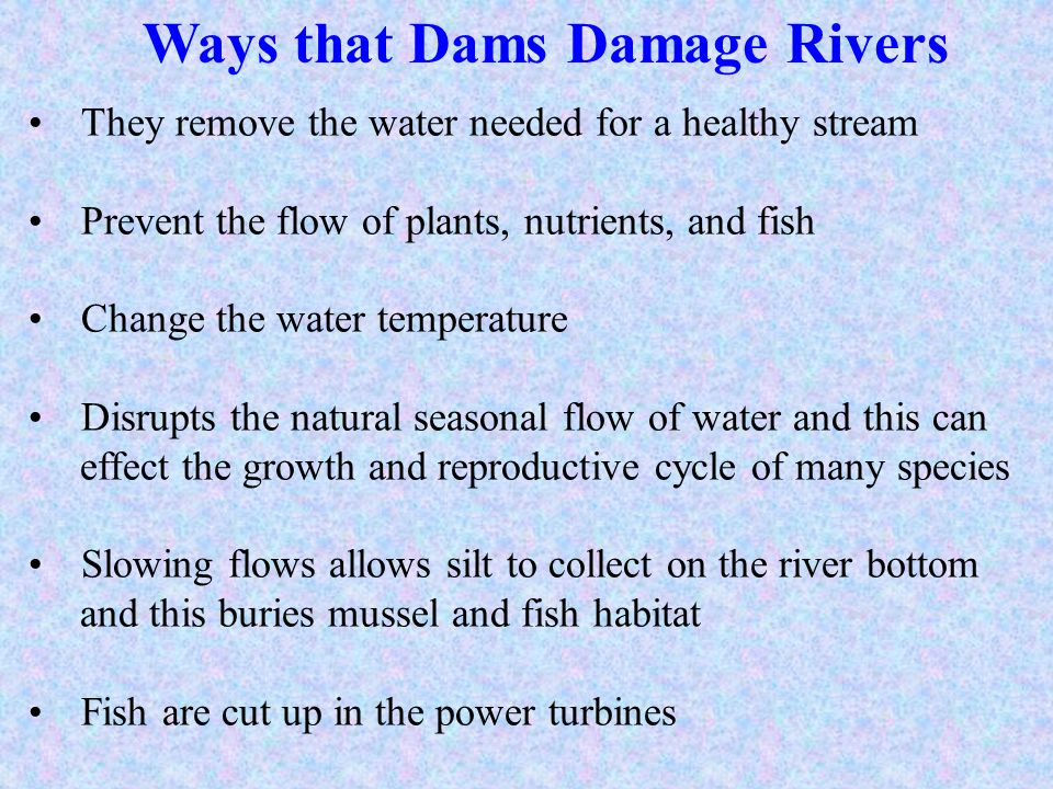 Ways that Dams Damage Rivers They remove the water needed for a healthy stream Prevent the flow of plants, nutrients, and fish Change the water temper