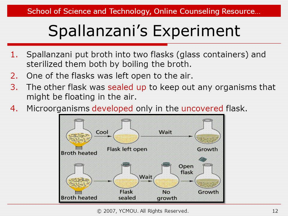 School of Science and Technology, Online Counseling Resource… Spallanzanis Experiment 1.Spallanzani put broth into two flasks (glass containers) and sterilized them both by boiling the broth.