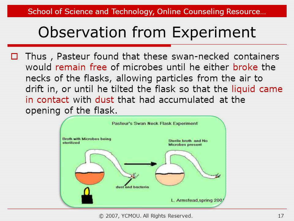 School of Science and Technology, Online Counseling Resource… Observation from Experiment Thus, Pasteur found that these swan-necked containers would remain free of microbes until he either broke the necks of the flasks, allowing particles from the air to drift in, or until he tilted the flask so that the liquid came in contact with dust that had accumulated at the opening of the flask.