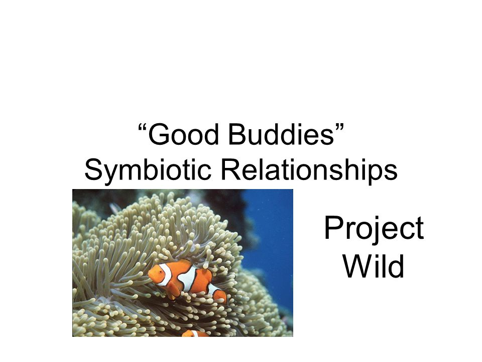 Good Buddies Symbiotic Relationships Project Wild