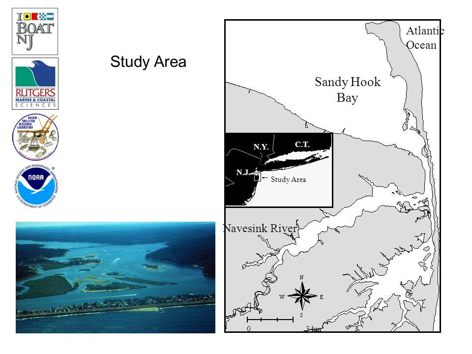 N.J. C.T. N.Y. Study Area Sandy Hook Bay Atlantic Ocean Navesink River 0 3 km Study Area