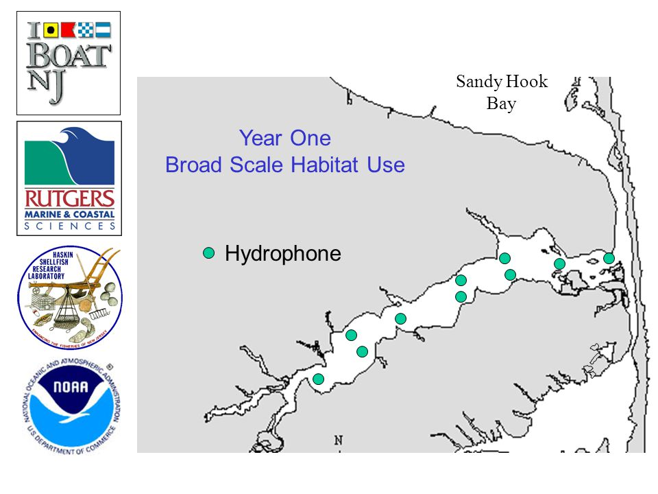 Sandy Hook Bay Year One Broad Scale Habitat Use Hydrophone