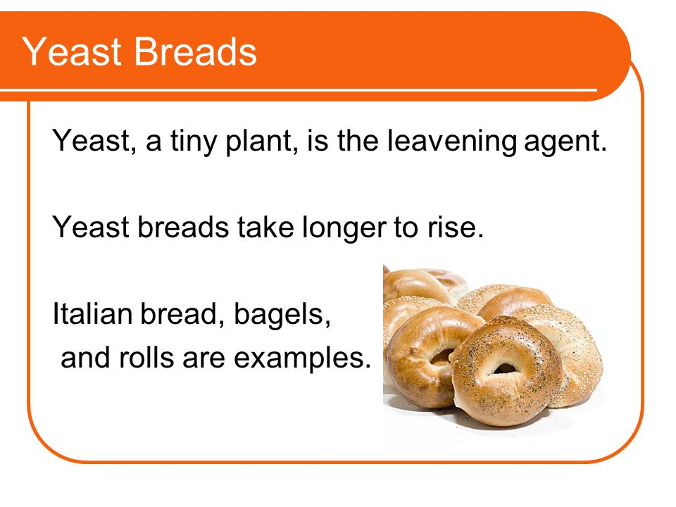 Yeast Breads Yeast, a tiny plant, is the leavening agent. Yeast breads take longer to rise. Italian bread, bagels, and rolls are examples.