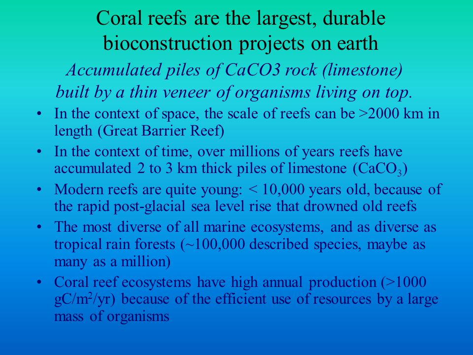 Coral reefs are the largest, durable bioconstruction projects on earth In the context of space, the scale of reefs can be >2000 km in length (Great Barrier Reef) In the context of time, over millions of years reefs have accumulated 2 to 3 km thick piles of limestone (CaCO 3 ) Modern reefs are quite young: < 10,000 years old, because of the rapid post-glacial sea level rise that drowned old reefs The most diverse of all marine ecosystems, and as diverse as tropical rain forests (~100,000 described species, maybe as many as a million) Coral reef ecosystems have high annual production (>1000 gC/m 2 /yr) because of the efficient use of resources by a large mass of organisms Accumulated piles of CaCO3 rock (limestone) built by a thin veneer of organisms living on top.