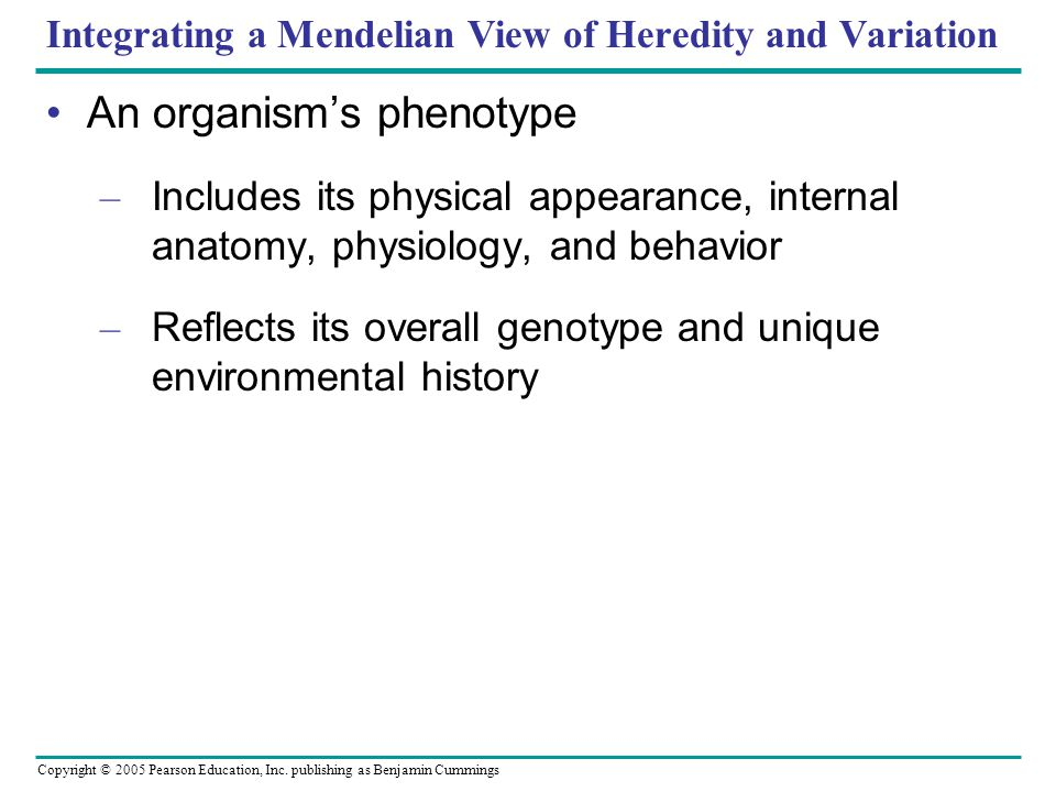Copyright © 2005 Pearson Education, Inc. publishing as Benjamin Cummings Integrating a Mendelian View of Heredity and Variation An organisms phenotype