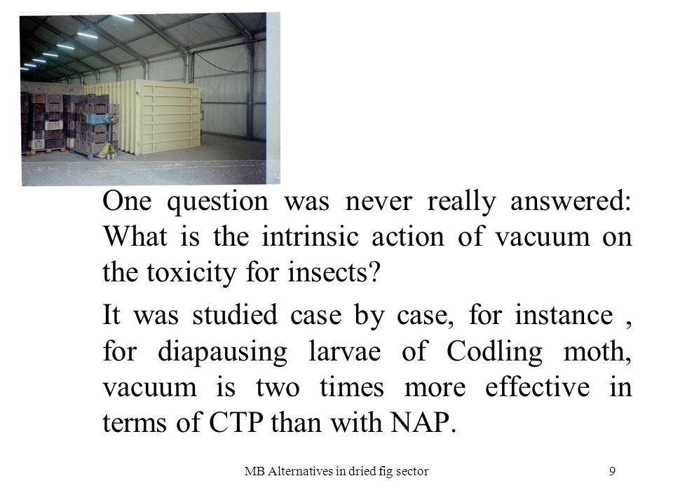 MB Alternatives in dried fig sector10 WHAT TO DO WITH THE VACUUM CHAMBERS WHEN MEBR WILL DISAPPEAR .