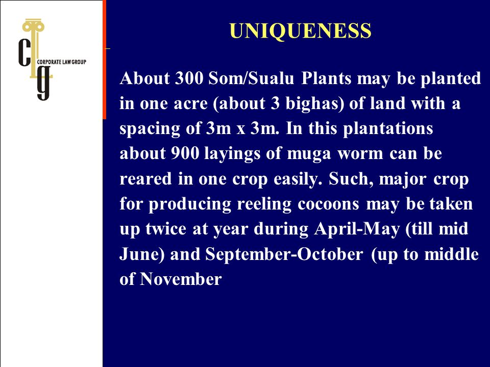 About 300 Som/Sualu Plants may be planted in one acre (about 3 bighas) of land with a spacing of 3m x 3m. In this plantations about 900 layings of mug