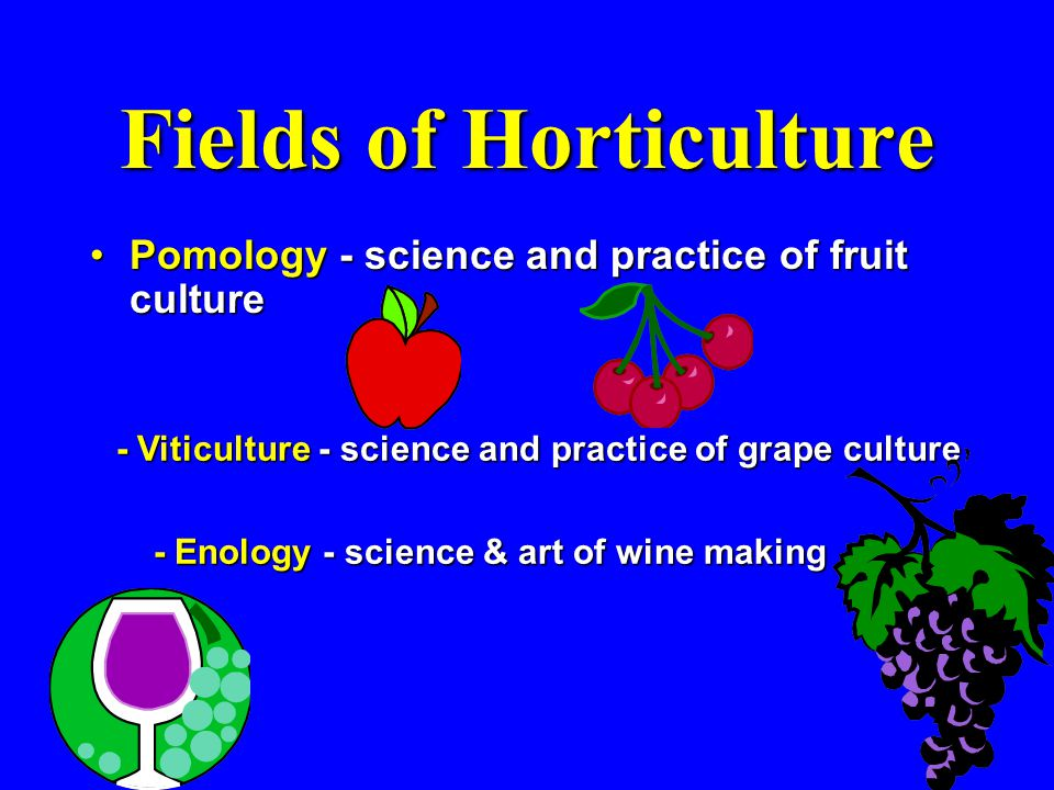 Fields of Horticulture Pomology - science and practice of fruit culturePomology - science and practice of fruit culture - Viticulture - science and practice of grape culture - Enology - science & art of wine making