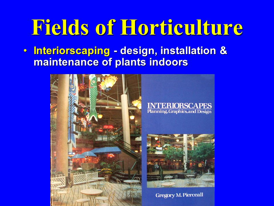 Fields of Horticulture Interiorscaping - design, installation & maintenance of plants indoorsInteriorscaping - design, installation & maintenance of p