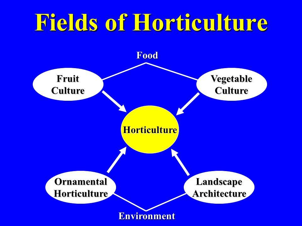Fields of Horticulture Horticulture FruitCultureVegetableCulture OrnamentalHorticultureLandscapeArchitecture Environment Food