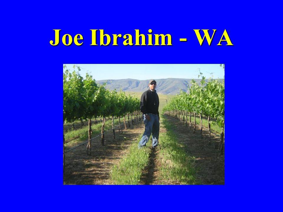 Joe Ibrahim - WA