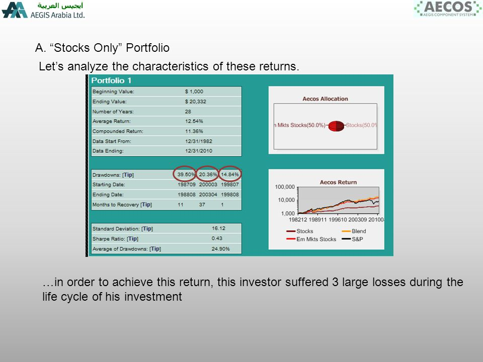 A. Stocks Only Portfolio Lets analyze the characteristics of these returns.