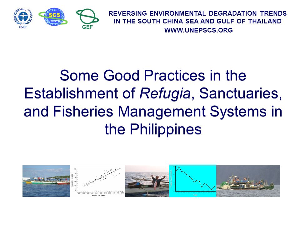 REVERSING ENVIRONMENTAL DEGRADATION TRENDS IN THE SOUTH CHINA SEA AND GULF OF THAILAND WWW.UNEPSCS.ORG Presentation Outline Establishing network of refugia and sanctuaries Species specific management interventions Some initiatives towards ecosystem approach