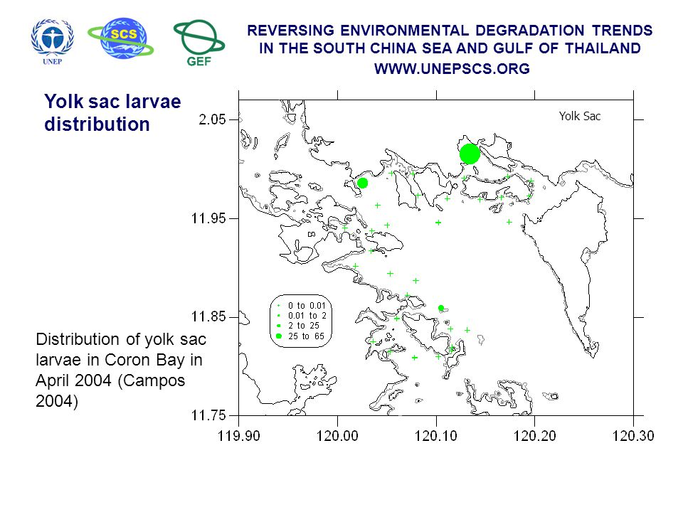 REVERSING ENVIRONMENTAL DEGRADATION TRENDS IN THE SOUTH CHINA SEA AND GULF OF THAILAND WWW.UNEPSCS.ORG Yolk Sac Distribution of yolk sac larvae in Cor