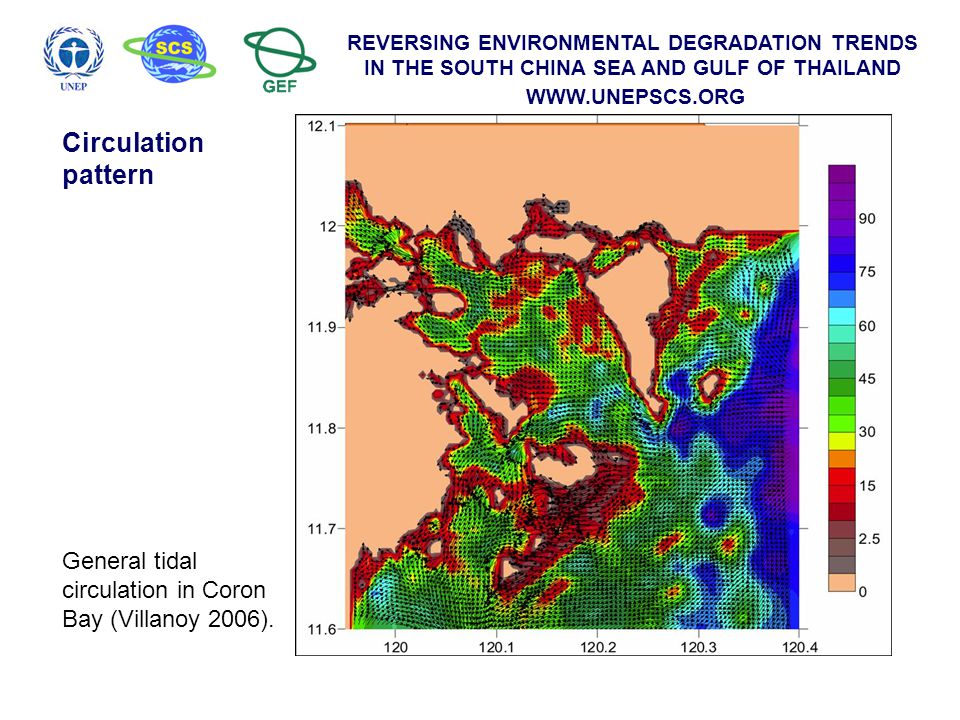 REVERSING ENVIRONMENTAL DEGRADATION TRENDS IN THE SOUTH CHINA SEA AND GULF OF THAILAND WWW.UNEPSCS.ORG Major seagrass areas