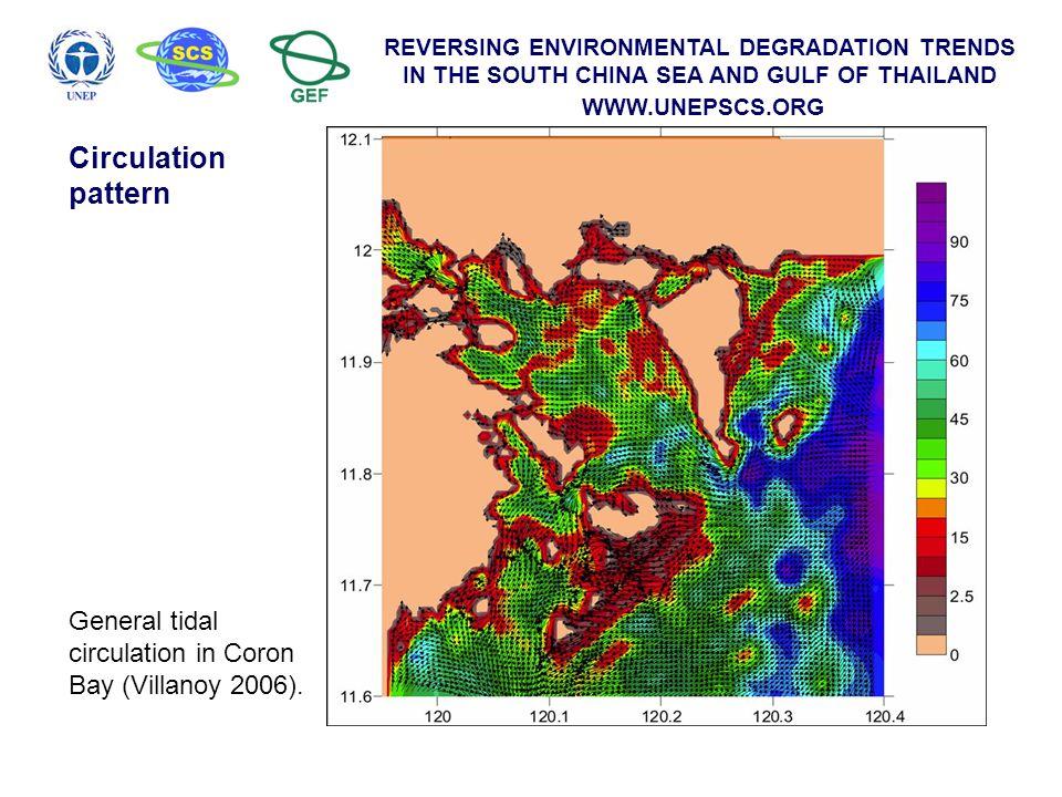 General tidal circulation in Coron Bay (Villanoy 2006). Circulation pattern