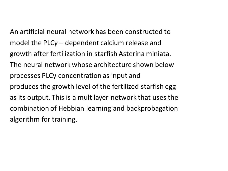 An artificial neural network has been constructed to model the PLCγ – dependent calcium release and growth after fertilization in starfish Asterina miniata.