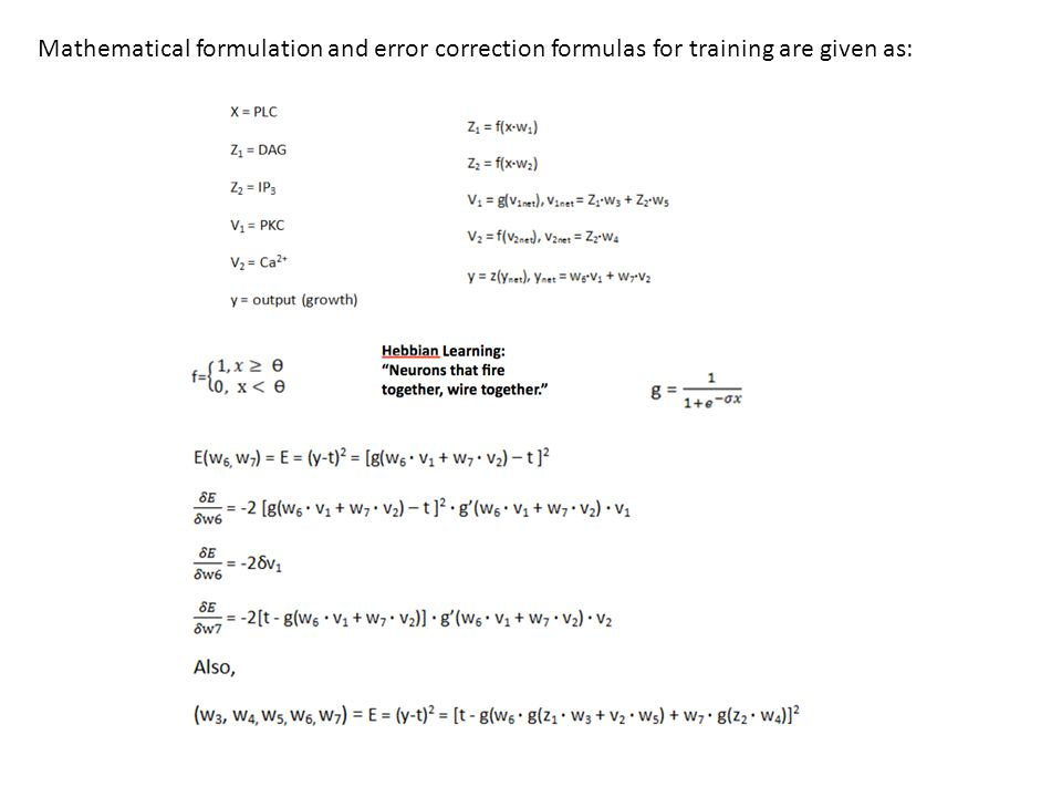 Mathematical formulation and error correction formulas for training are given as: