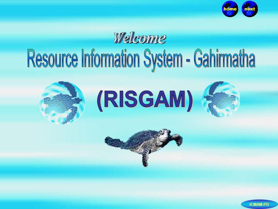 ICMAM-PD