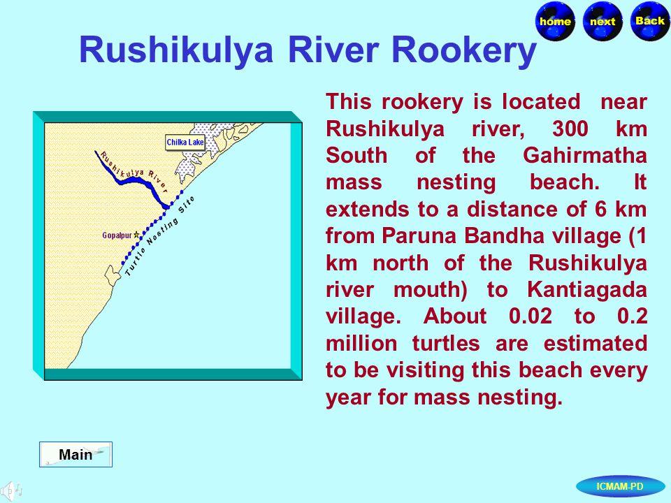 ICMAM-PD Rushikulya River Rookery This rookery is located near Rushikulya river, 300 km South of the Gahirmatha mass nesting beach.