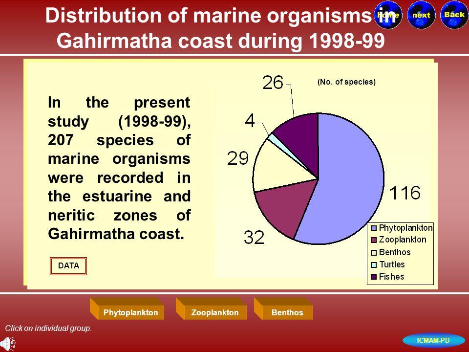 ICMAM-PD Distribution of marine organisms in Gahirmatha coast during 1998-99 In the present study (1998-99), 207 species of marine organisms were recorded in the estuarine and neritic zones of Gahirmatha coast.