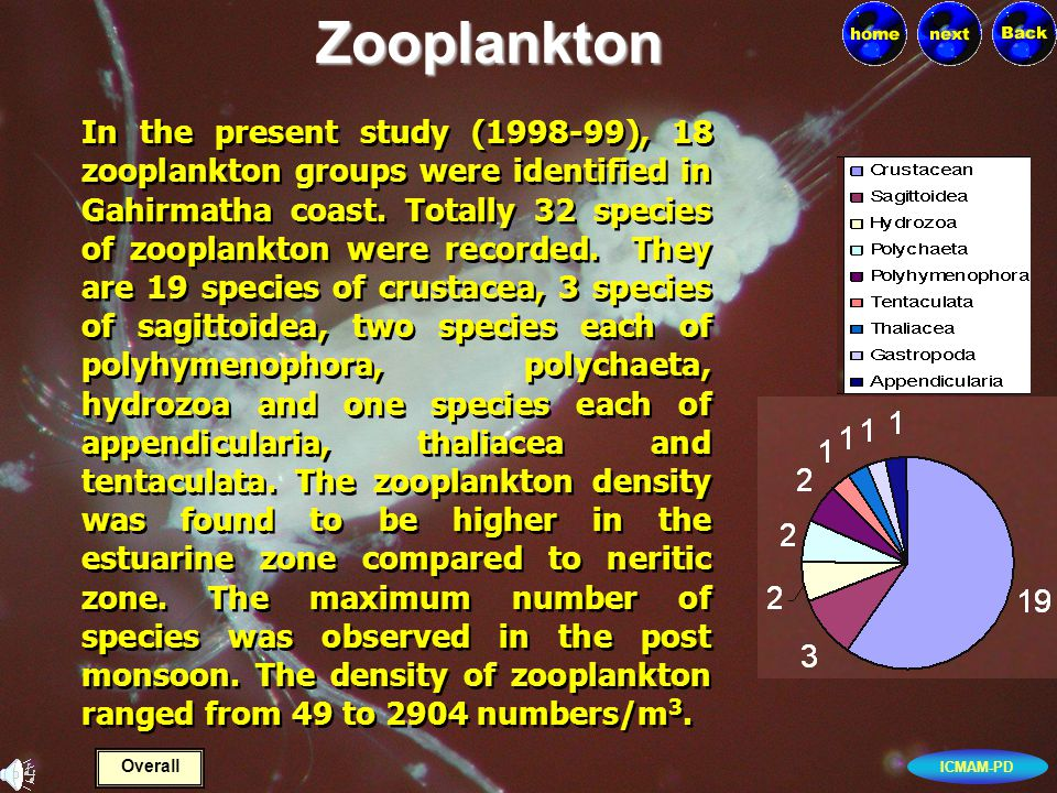 ICMAM-PD In the present study (1998-99), 18 zooplankton groups were identified in Gahirmatha coast.