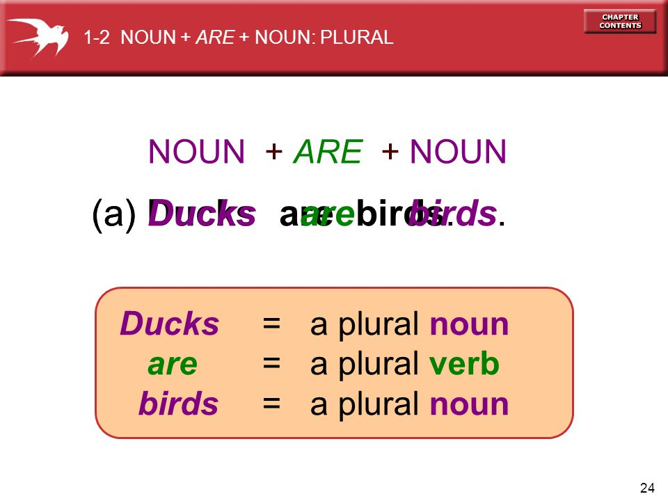 24 (a) Ducks are birds.