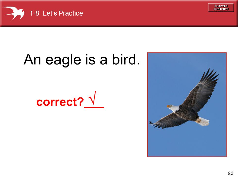 83 An eagle is a bird. 1-8 Lets Practice correct ___