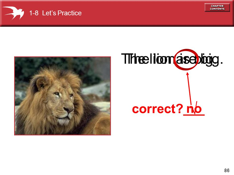86 The lion is big. correct ___ The lion are big. no 1-8 Lets Practice