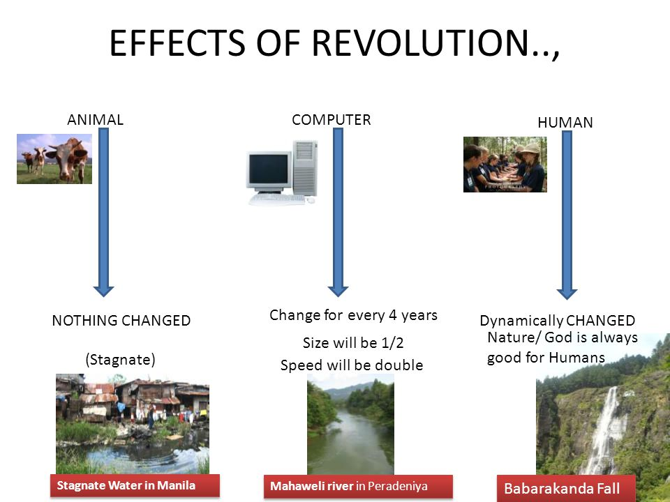 EFFECTS OF REVOLUTION.., ANIMAL NOTHING CHANGED (Stagnate) HUMAN COMPUTER Change for every 4 years Size will be 1/2 Speed will be double Nature/ God i